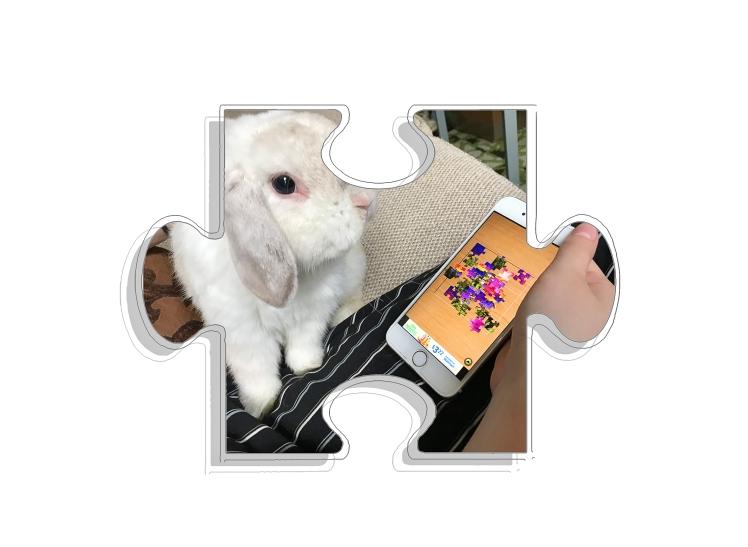RFU Jigsaw Puzzle App 08